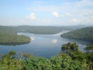 O Parque Estadual do Rio Doce (imagem), no Vale do Rio Doce, abriga a maior reserva de Mata Atlântica do Estado