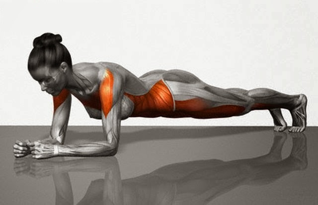 Ombros devidamente alinhados, braços paralelos, coluna reta, bumbum empinado, pernas bem esticadas.